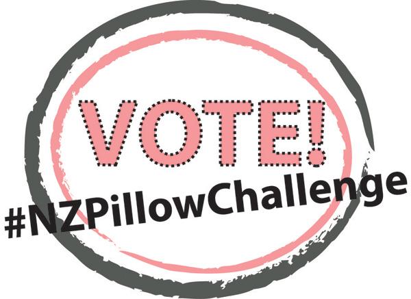 Nancy Zieman Pillow Challenge Vote Now