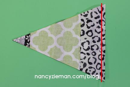Nancy Zieman Block of The Month 7 zj