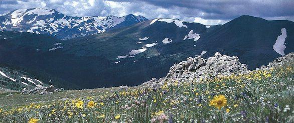 Nancy Zieman's Landscape Quilt