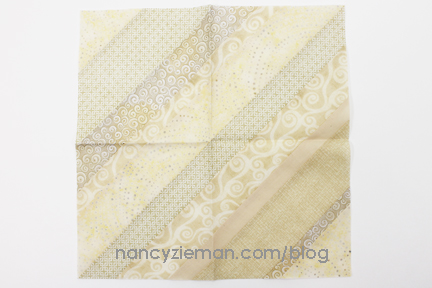 NancyZieman 2016BoM January 15