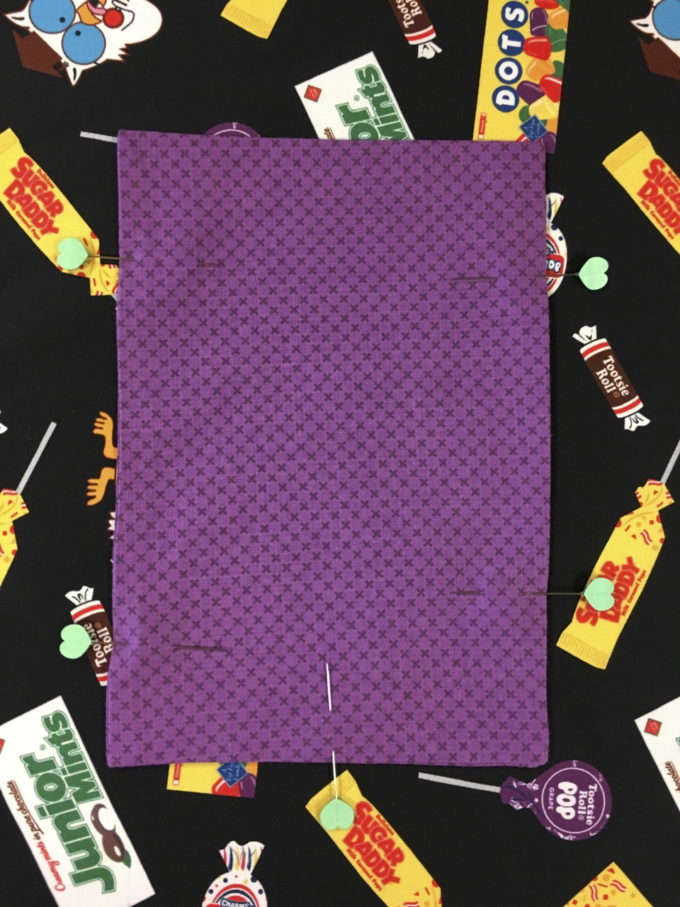 Nancy Zieman Productions 2019 I Sew For Fun Sewing Challenge Cinch Sack Sewing Project