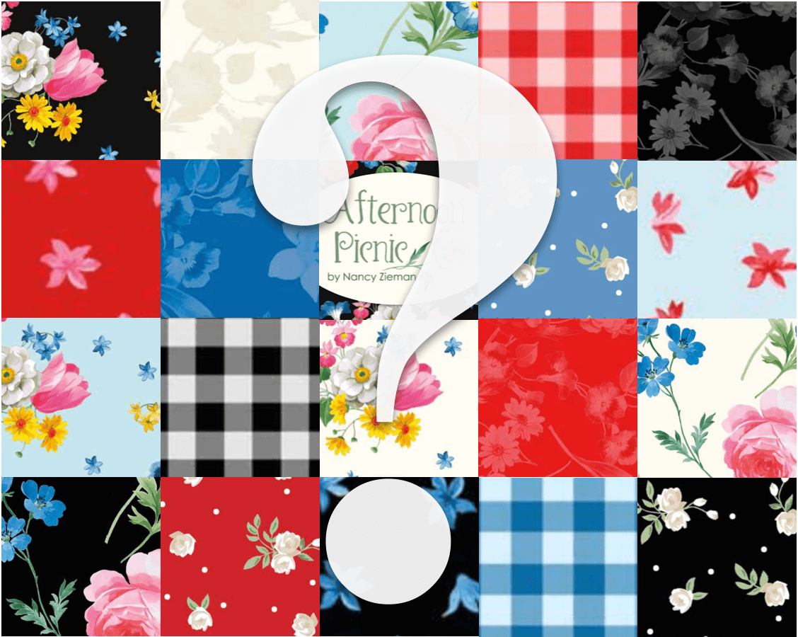 Nancy Zieman Productions 2019 Block of the Month Featuing Afternoon Picnic by Nancy Zieman for Riley Blake Designs