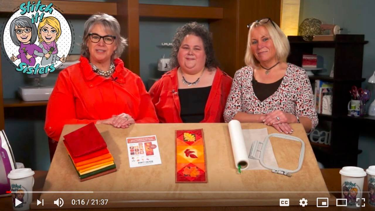 Quick Quilting in the Hoop Stitch it! Sisters Program 115 at the Nancy Zieman Productions Blog