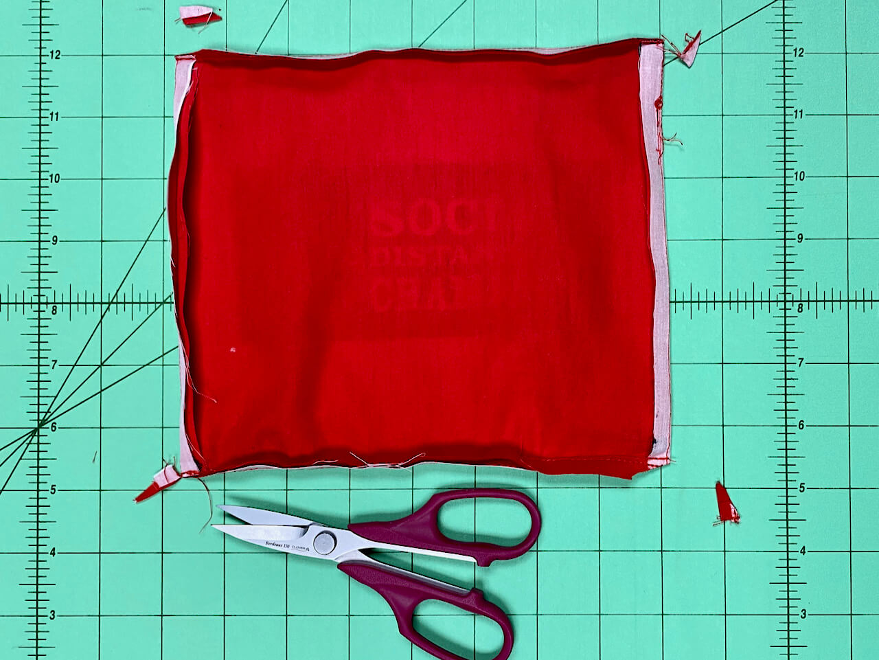 Sasquatch Face Mask Sewing Tutorial at The Nancy Zieman Productions Blog